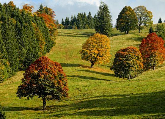 Der Herbst ist bei Anlegern unbeliebt